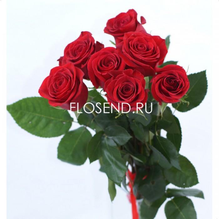 7 красных роз